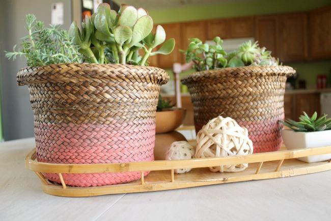 condo summer plants