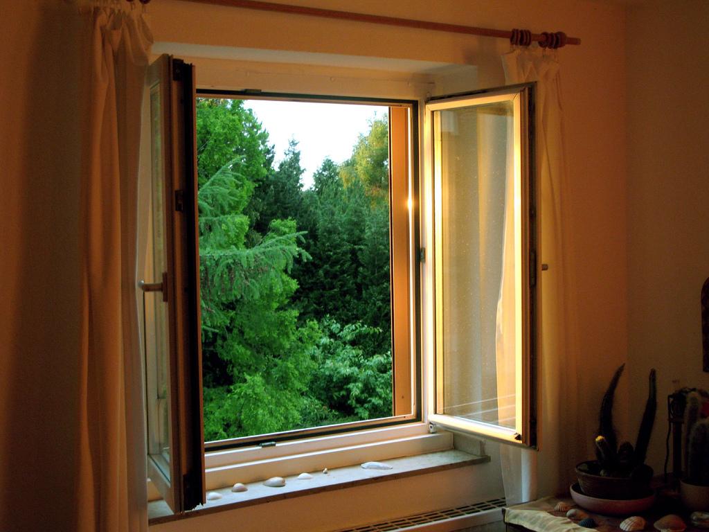 condo window
