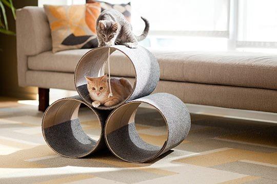 Modern pet cylinders