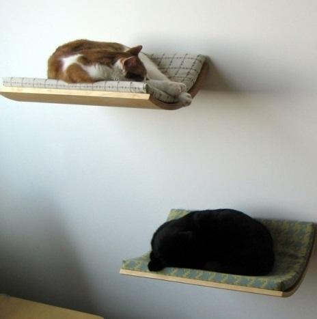 condo pets bed