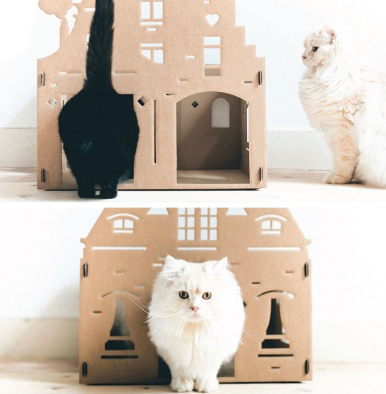 Make Your Cat Feel at Home