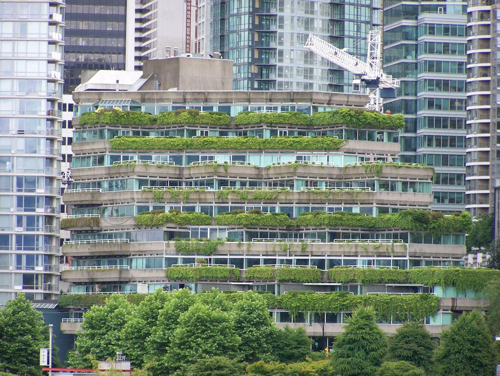Green Roof Condo