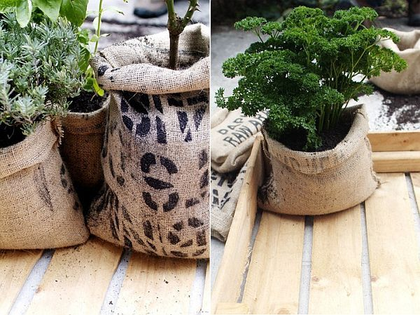 Recycle More with a Coffee Bean Bag Planter