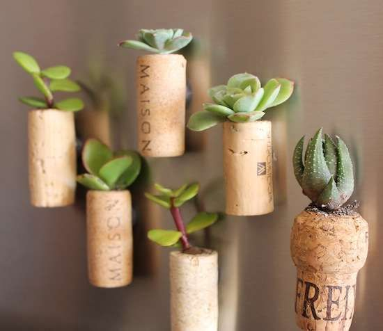 Stick on the Magnetic Cork Planters