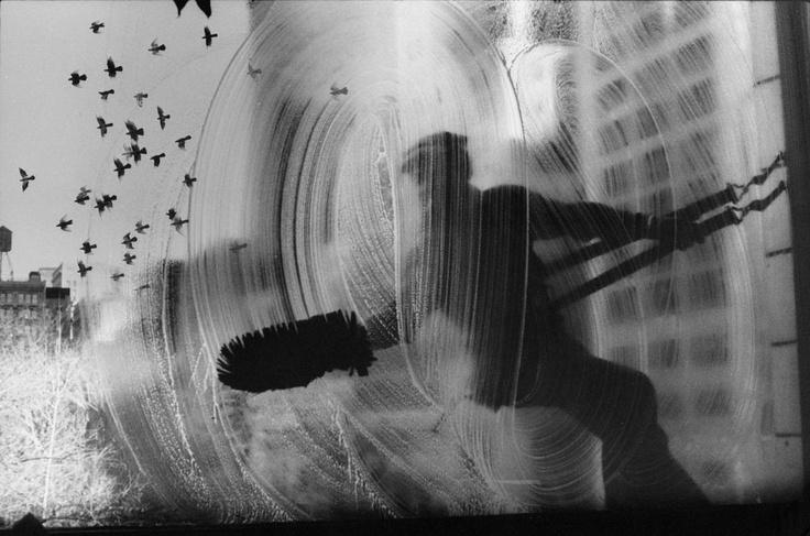 Neg- _CL92_LVTScanned photo montage- birds addedNeg-74-3-b Window washer
