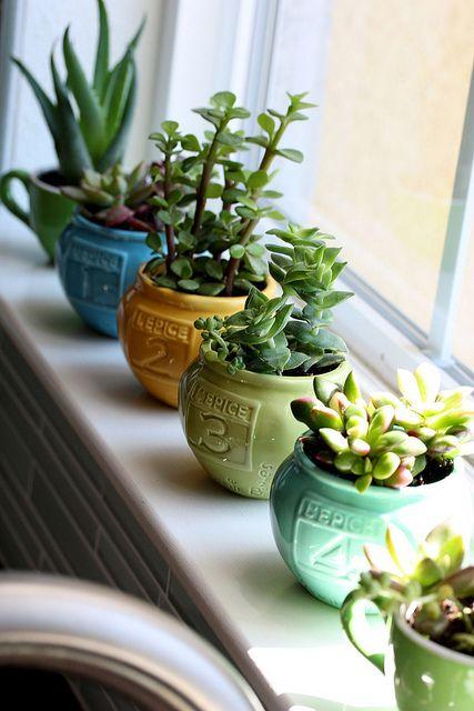 plant green in your condo