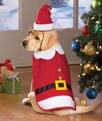 santa claus costume for pets