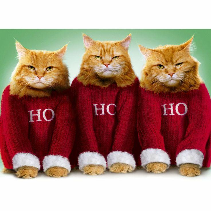 sweater condo costumes