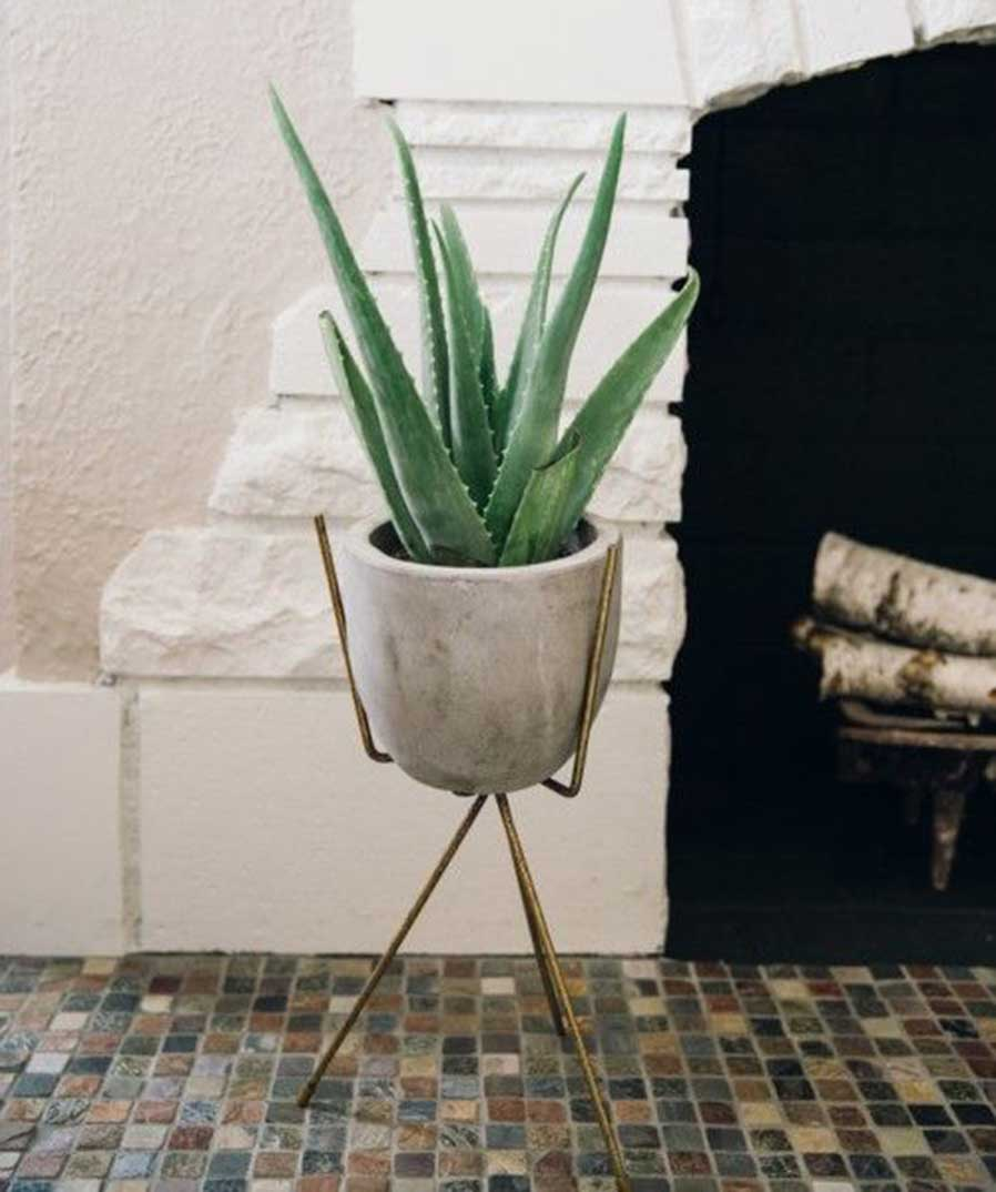 Bathroom Plants Part - 50: DMCI Communities - DMCI Homes