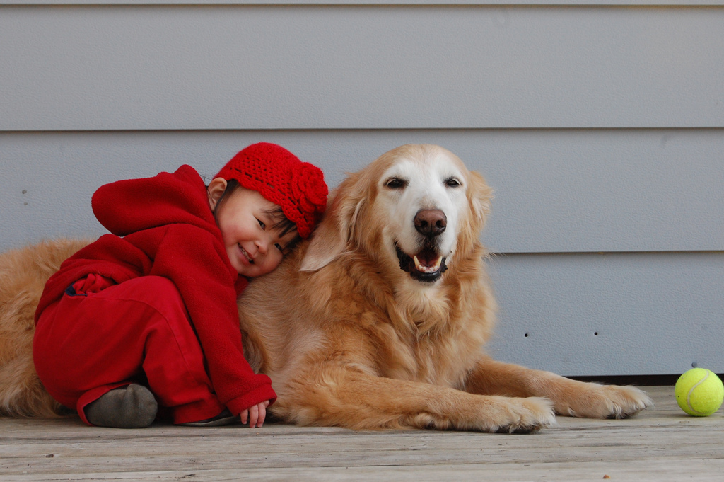 great companions for kids