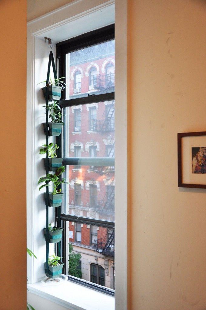 Window Green Show