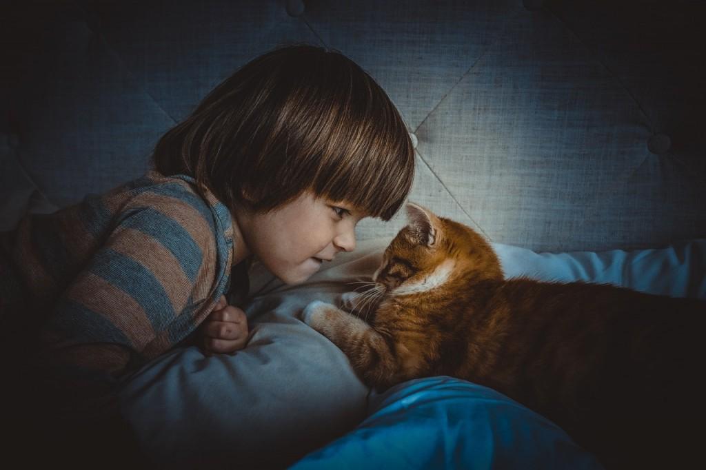 Adopt a Family Pet