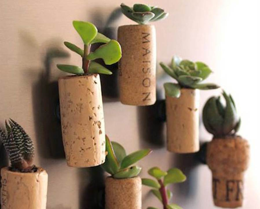 Mini magnetic cork planters