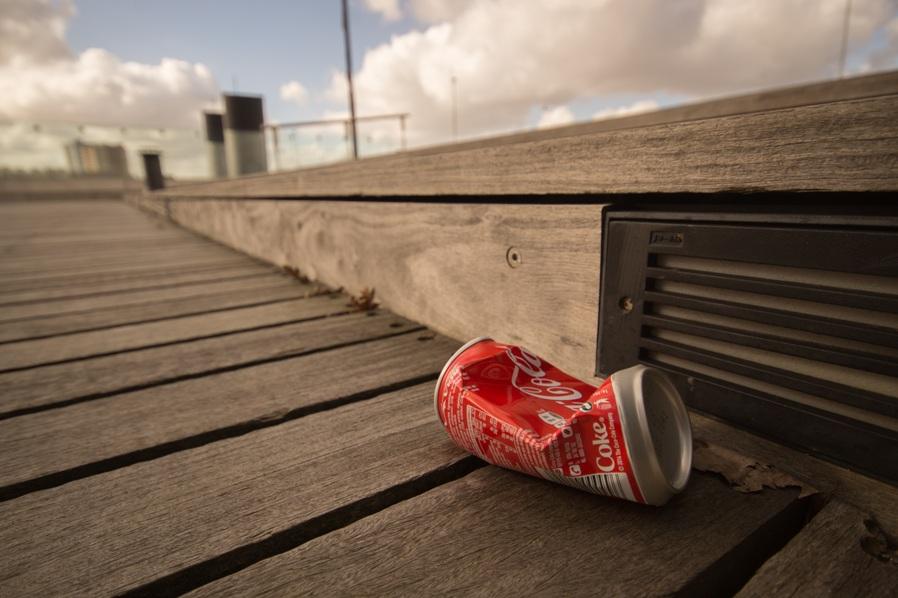 shall not liter or vandalize
