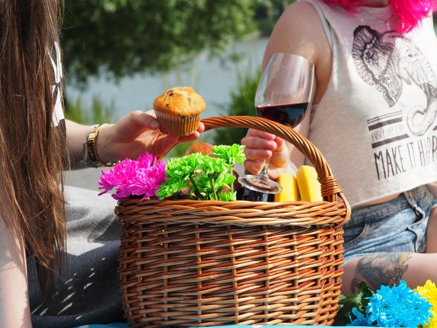 annual picnic day