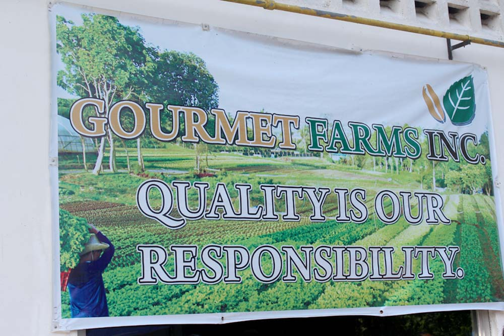 IN PHOTOS: Siena Park Residences kids visit Gourmet Farms