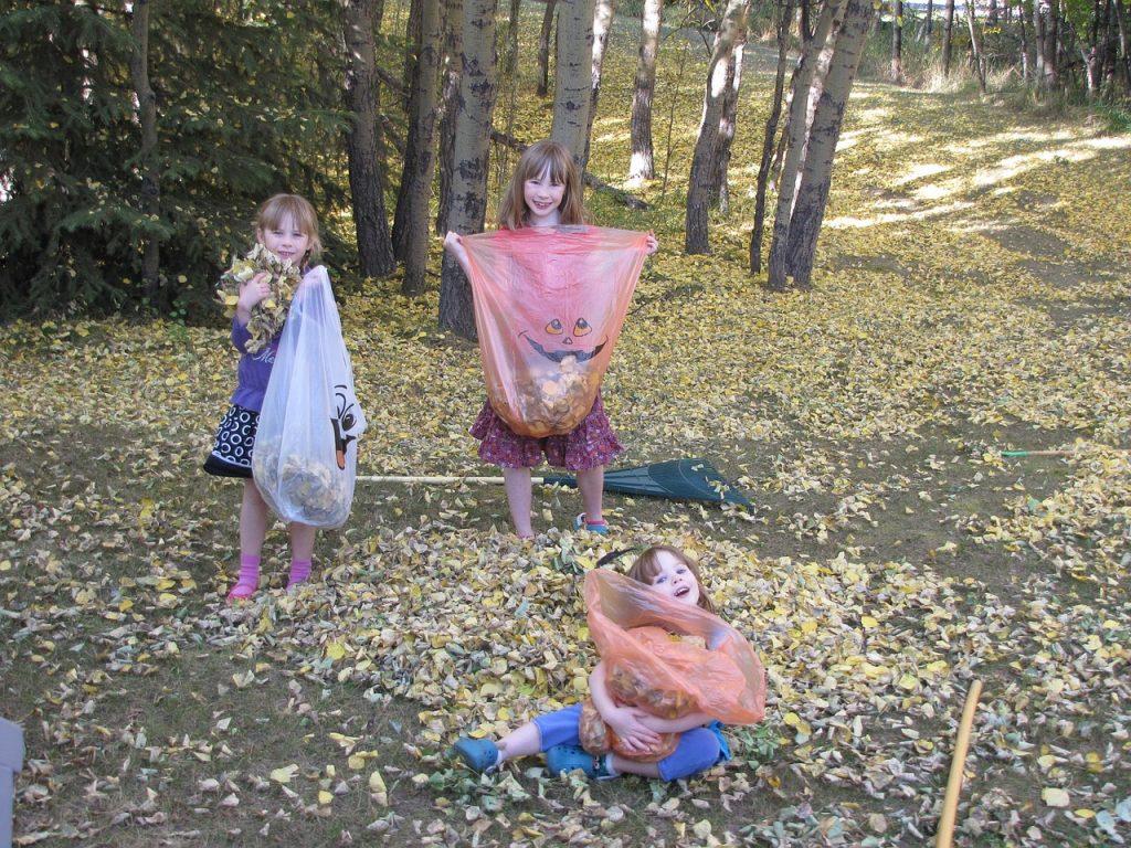 Summer Fun Household Chores