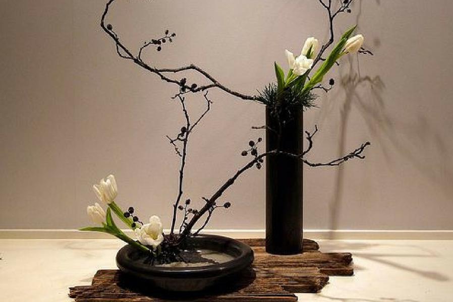 Minimalist Condo Ikebana Miniature Nature Environments