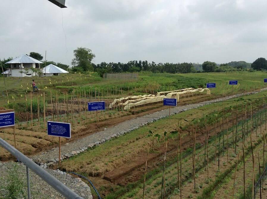 Gawad Kalinga Farmland