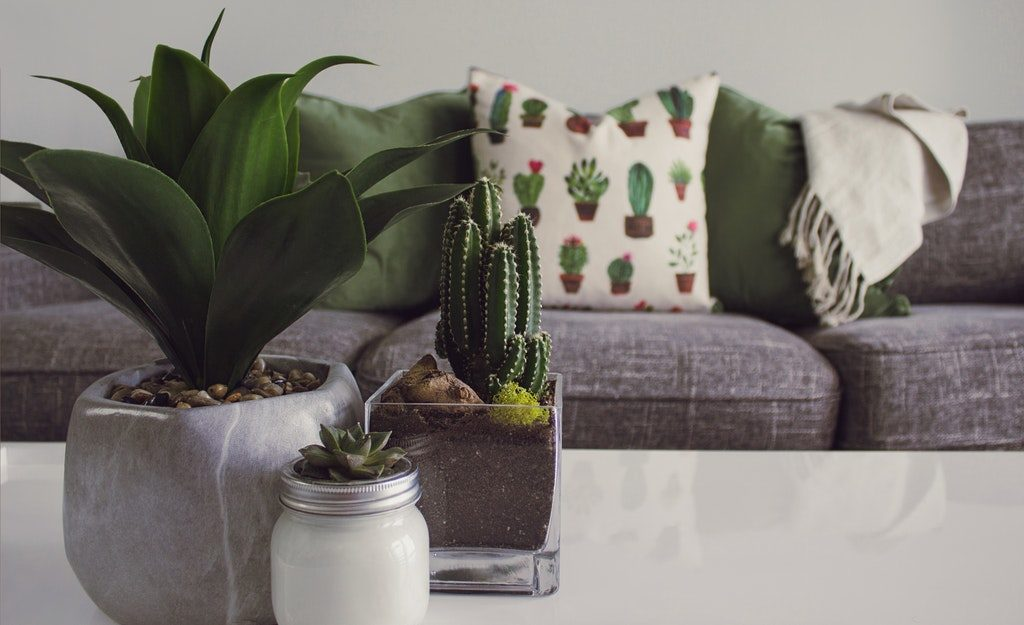 13 Eco-Friendly Tips To Turn Your Condo Into a Smart Home