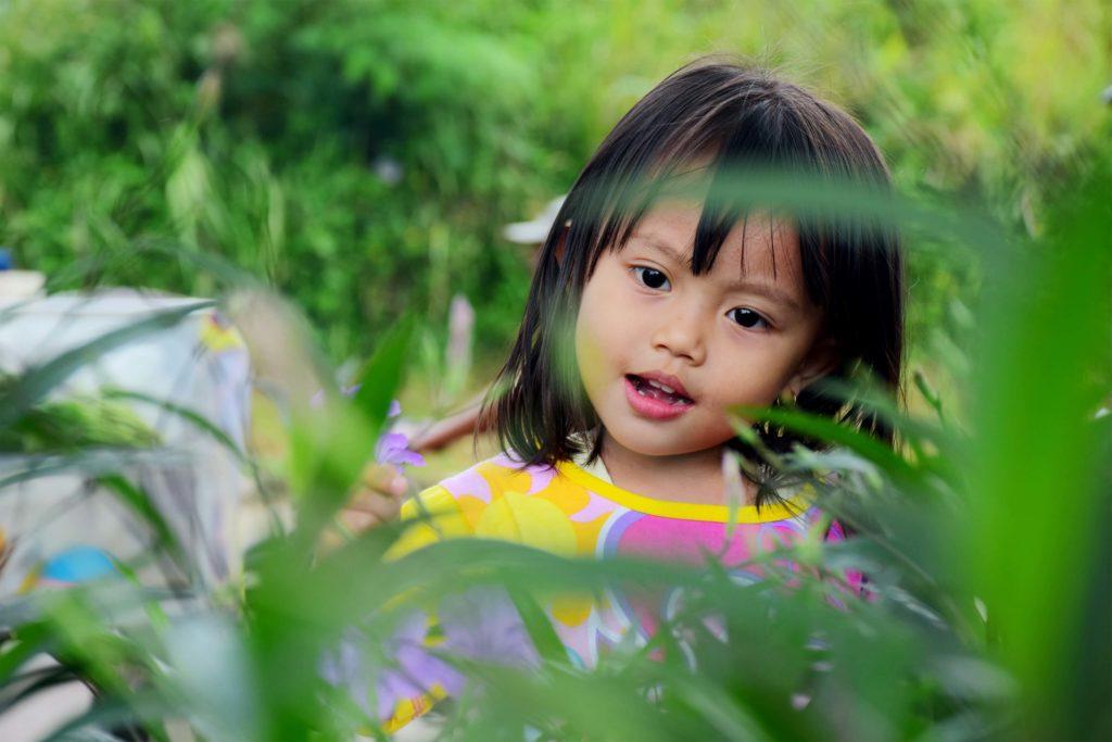 rainforest adventure experience